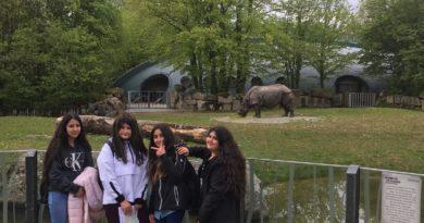 Tierpark Hellabrunn-immer wieder ein Erlebnis für die Schüler_innen der ersten  Klassen